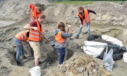 Afgestudeerde archeoloog lang werkloos? Niet met deze tips!