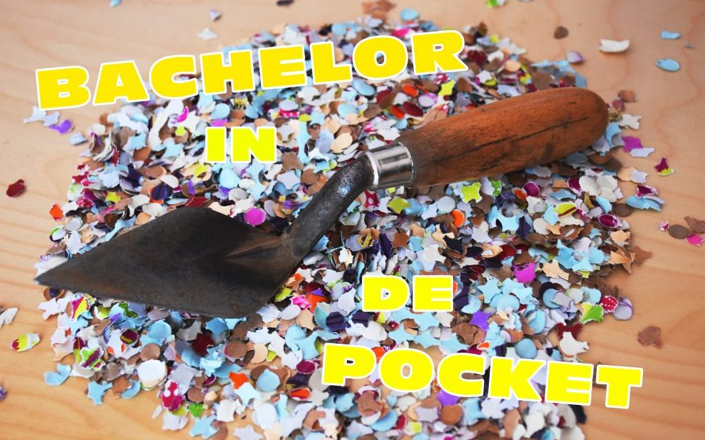 Scriptie gehaald en bachelor in the pocket!
