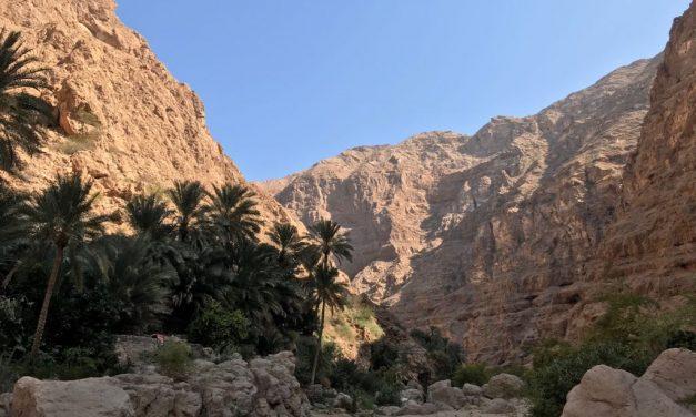 Oman: het ideale vakantieland in de Golfregio