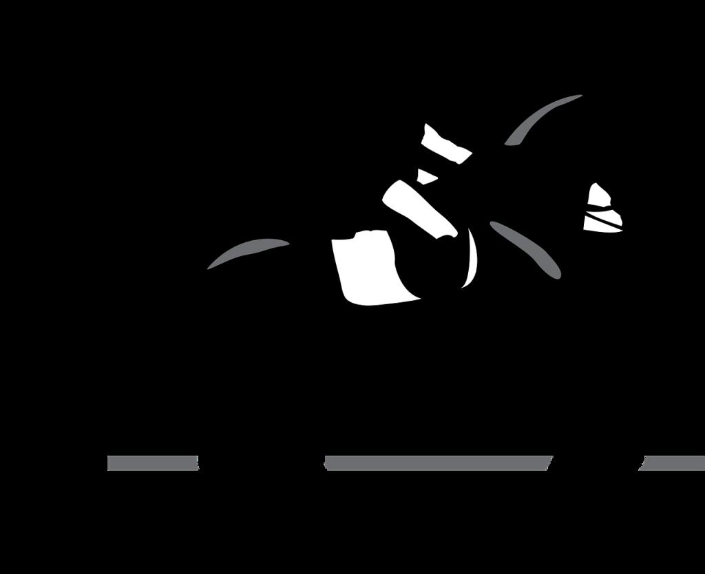 Dressuuramazone en paard in galop