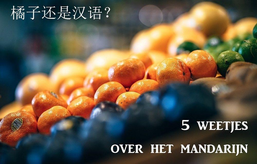Chinese wist-je-datjes