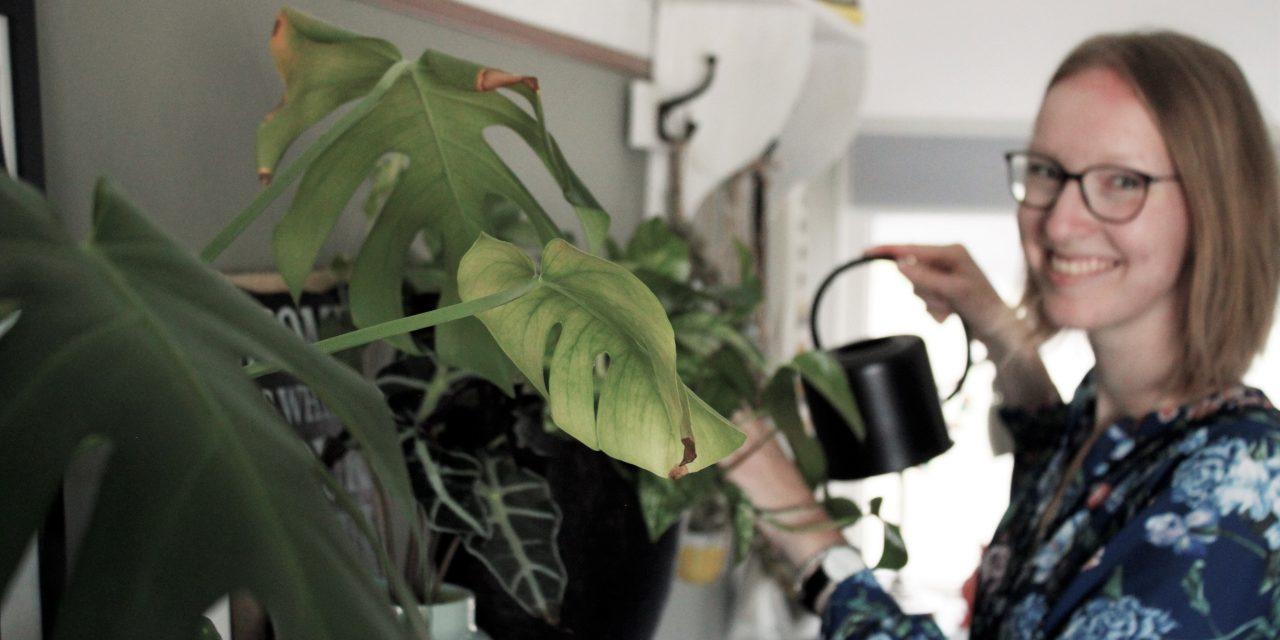 Urban Jungle: tips voor een groene studentenkamer