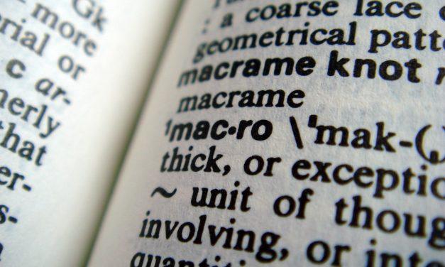 Het (Leids) studentenwoordenboek deel 2