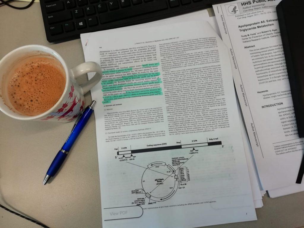 Artikelen lezen en koffie drinnken op stage