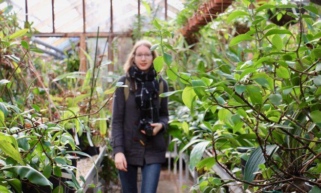 De Hortus Botanicus op de gevoelige plaat