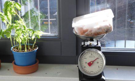 Koken wanneer je geen tijd hebt: tips om het vol te houden