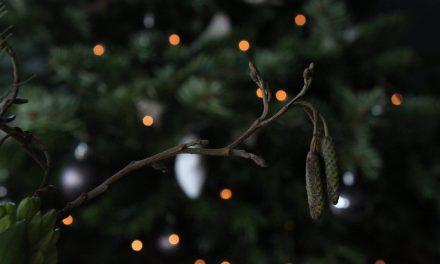 2020: Een kerst om nooit te vergeten